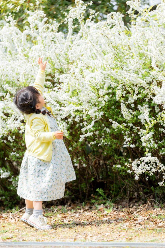 木曽三川公園のロケーション写真