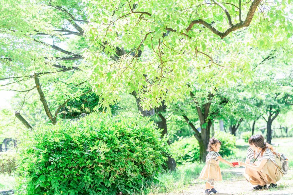 落合公園のロケーション写真
