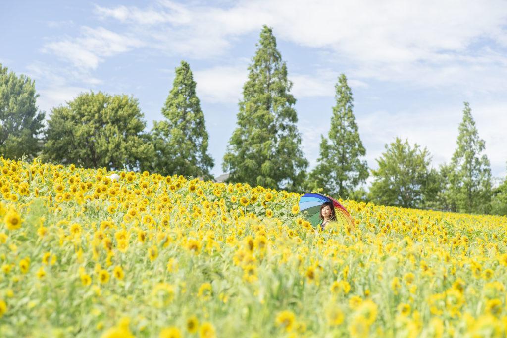 愛知牧場のロケーションフォト