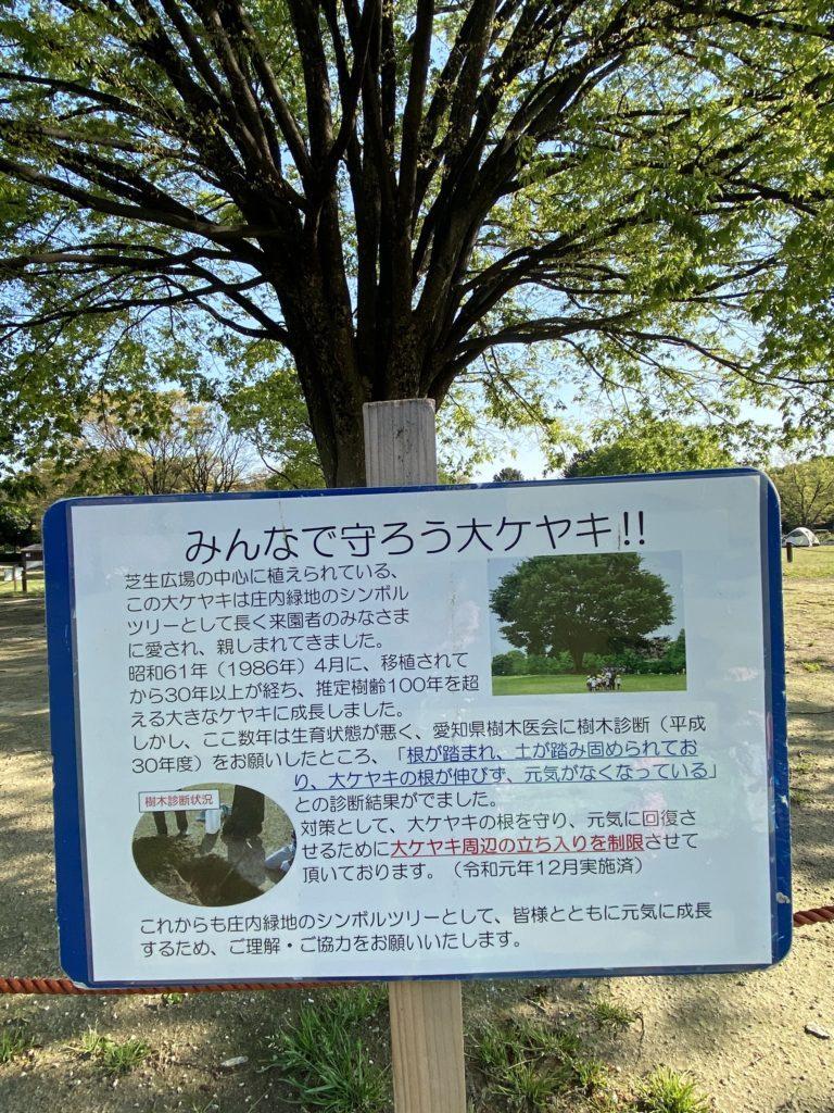 庄内緑地公園のロケーションフォト
